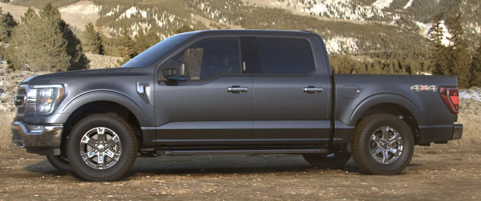 Ford-F150-Carbonized-Gray.png